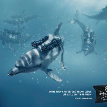 Nouvelle campagne pour Sea Shepherd